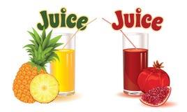 Gläser für Saft von der Ananas und vom Granat Lizenzfreies Stockbild