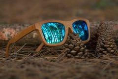 Gläser im Wald Stockbild
