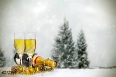 Gläser mit Champagner und Flasche lizenzfreies stockbild