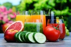Gläser mit frischen organischen Detoxsäften im Garten Lizenzfreie Stockfotografie