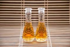 Gläser mit rakija Lizenzfreie Stockfotos