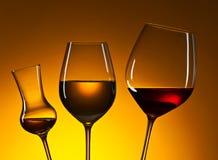 Gläser mit rotem und weißem Wein Lizenzfreies Stockbild