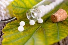 Glóbulos homeopáticos Foto de archivo libre de regalías