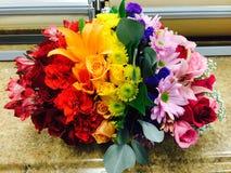 Glória do arco-íris fotografia de stock