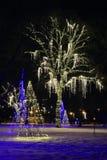 Glöd för Niagara Falls ljusfestival Royaltyfri Foto
