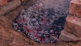 Glöd från branden för att laga mat campfire royaltyfri bild