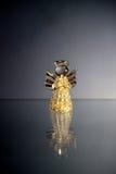 Glödande ängel med en trumpet Royaltyfria Foton
