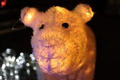 Glödande björn royaltyfri foto
