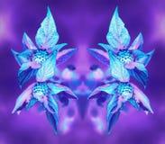 Glödande blom- spegelmodell för psykedeliskt neon royaltyfria bilder