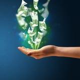 Glödande pengar i handen av en kvinna Royaltyfri Foto