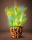 Glödande sidor som kommer ut ur blomkrukan Fotografering för Bildbyråer