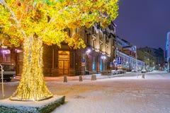 Glödande träd på Kuznetsky mest gata Royaltyfri Fotografi