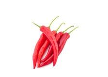 Glödhet chili Fotografering för Bildbyråer