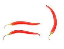 Tre röda chilipeppar royaltyfri bild