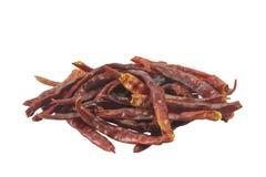 Glödhet Chilipeppar på vitbakgrund Arkivfoto