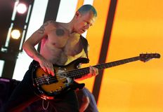 Glödheta Chili Peppers i konsert royaltyfria foton