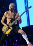 Glödheta Chili Peppers i konsert royaltyfria bilder