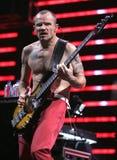 Glödheta Chili Peppers utför i konsert arkivfoto