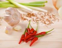Glödheta chilipeppar med vitlök och salladslök Royaltyfri Fotografi