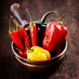 Glödheta chilipeppar, söt peppar för habanero och jalapeno Royaltyfria Foton