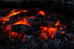 Glödheta kol i branden arkivfoton