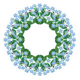 Glöm mig den inte blom- runda ramen som isoleras på vit bakgrund Royaltyfri Foto
