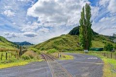 Glömd världshuvudväg i Taranaki, Nya Zeeland Royaltyfria Bilder