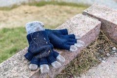 Glömda blått och grå färger färgade barns handskar som ligger på en sten i en parkera fotografering för bildbyråer