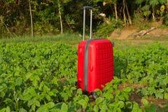 Glömt bagage Röd plast- resväska med det långa handtaget Arkivbilder