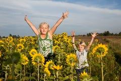 Glück in den Sonnenblumen Stockfotos