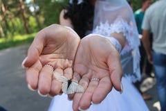 Glücklich als Schmetterling Stockbilder