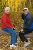Glückliche ältere Paare. Stockfotografie