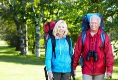 Glückliche ältere Paare. Stockbild