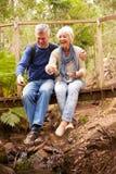 Glückliche ältere Paare, die auf einer Brücke im Wald, vertikal sitzen stockfotos