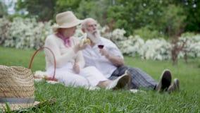 Glückliche ältere Paare am Picknick im Sommer parken stock footage