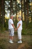 Glückliche Ältestpaare Stockfotografie
