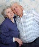 Glückliche alte Paare Lizenzfreie Stockfotografie