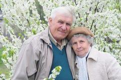 Glückliche alte Paare Lizenzfreies Stockfoto