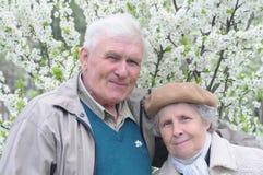 Glückliche alte Paare in blühendem Garten Lizenzfreie Stockfotos