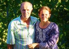Glückliche alte Paare, die in einem Park an einem sonnigen Tag lächeln Lizenzfreies Stockfoto