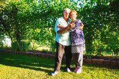 Glückliche alte Paare, die in einem Park an einem sonnigen Tag lächeln Lizenzfreies Stockbild