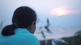 Glückliche asiatische Dame, die mit den Seemöwen herum fliegen sich erneuert Langsame MotionAsian Dame, die gerade am Hafen kühlt stock footage