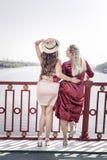 Glückliche begeisterte Frauen, welche die schöne Ansicht genießen lizenzfreie stockfotos