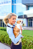 Glückliche blonde Frau mit Chihuahua. Stockfotos