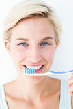 Glückliche blonde schauende Kamera, die Zahnbürste hält Lizenzfreies Stockfoto