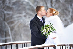 Glückliche Braut und Bräutigam des romantischen Kusses am Wintertag Stockbild