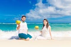 Glückliche Braut und Bräutigam, die Spaß auf einem tropischen Strand mit Kokosnüssen hat Lizenzfreie Stockfotografie