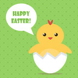 Glückliche Design-Grußkarte Ostern flache mit nettem Babyhuhn Stockfotografie