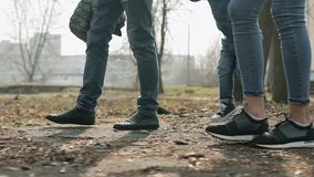 Glückliche dreiköpfige Familie, die im Frühjahr Park geht stock video