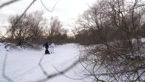 Glückliche Eltern von Kindern fahren auf einen Schlitten Frohe Familie, die auf der natürlichen Eisbahn stillsteht Der düstere Wi stock video footage